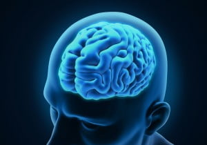 A rendering of the brain of a Parkinson's patient via Bigstock