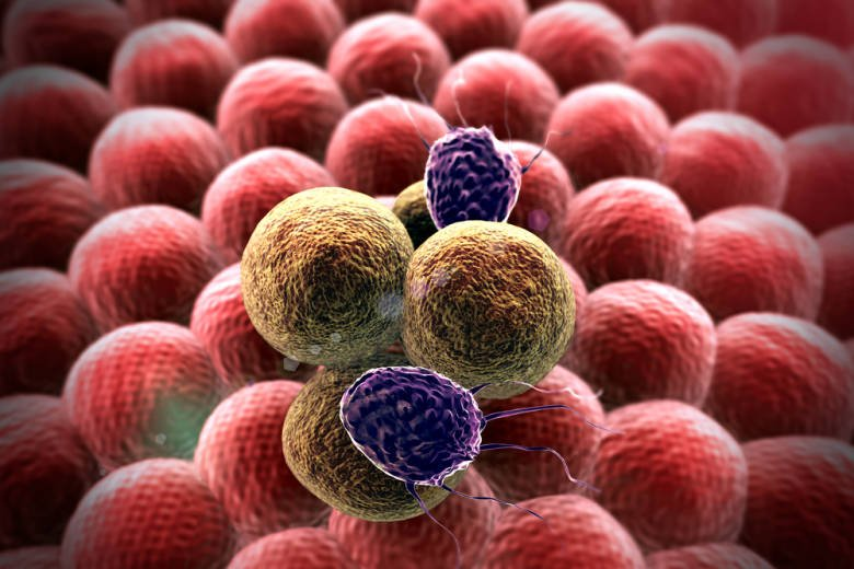 Nano cancer cells. detecting cancer on breath. Courtesy of Technion