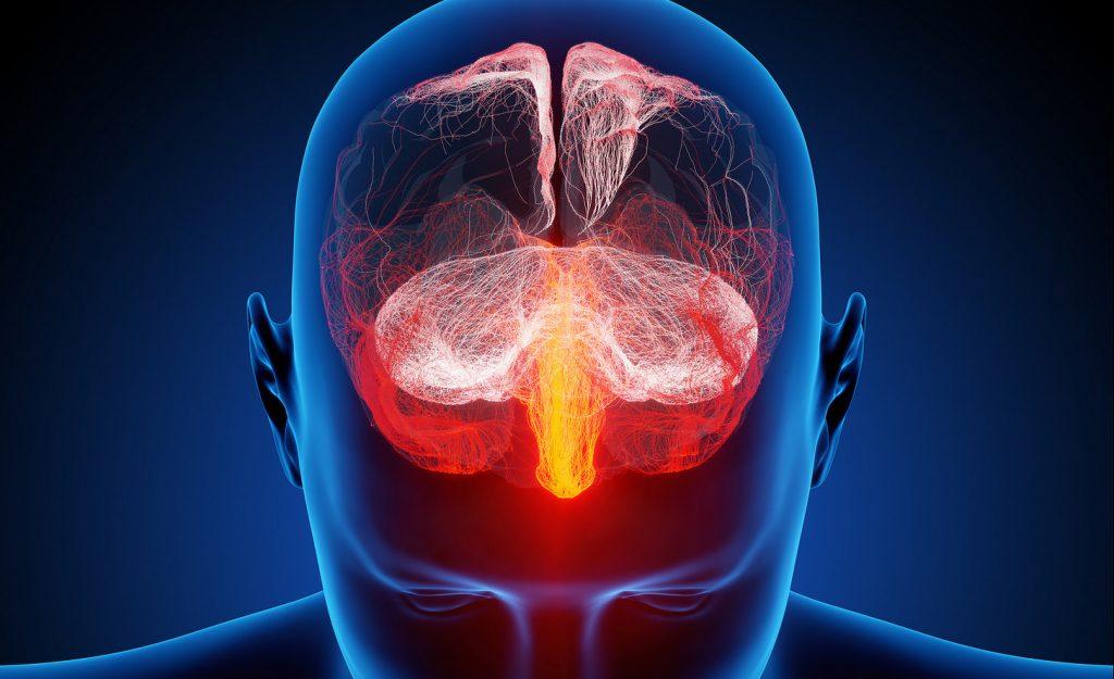 brain digital via Flickr