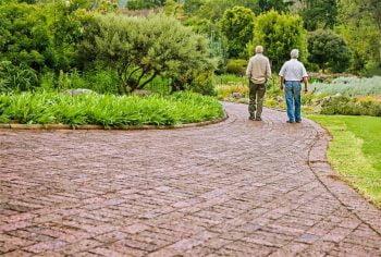 old friends men via stevepb/Pixabay