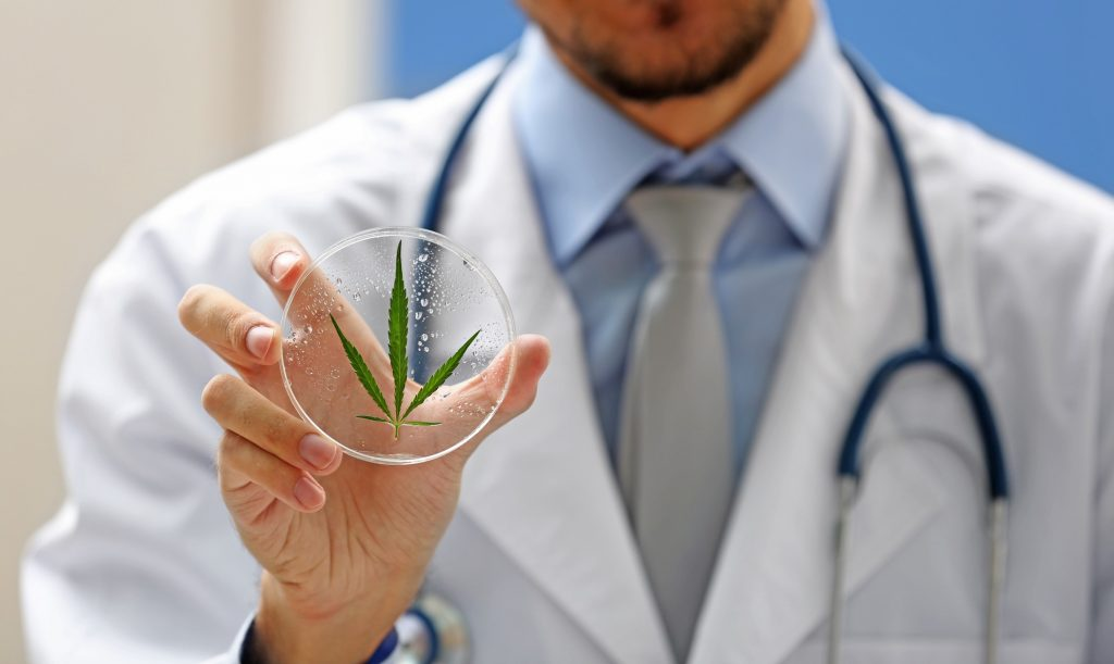 Illustrative: A doctor holding a cannabis leaf. Photo by Deposit Photos