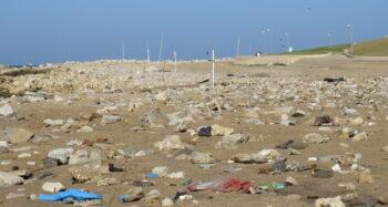 Beach litter. Photo via Plastic Free Israel