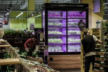 Infarm's urban farming system in Germany. Photo via Kroger