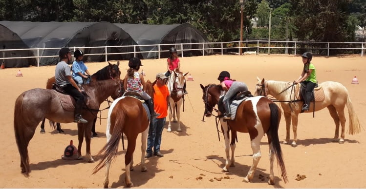 INTRA provides equine therapy in Israel. Screenshot/Intra.org.il