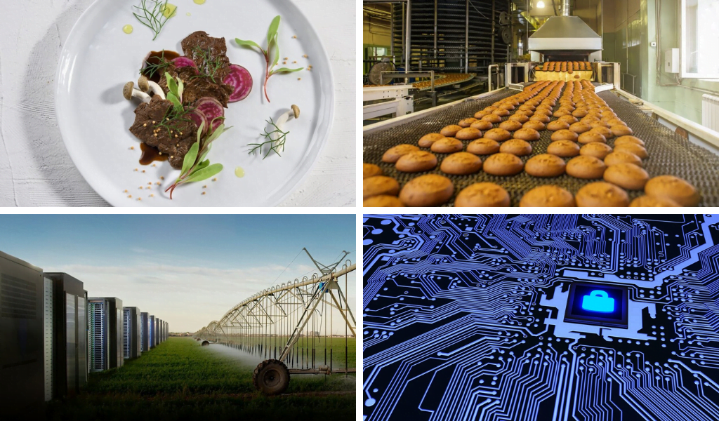 Six Israeli companies were selected to the WEF's Technology Pioneers 2020 list. Photo clockwise: composite image of Aleph Farms' clean meat, a production line via Seebo, a field via Prospera, and a cybersecurity lock illustration via Deposit Photos