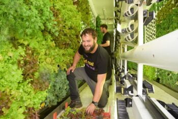 Vertical Field's vertical farms and gardens yield fresh produce on-site. Courtesy