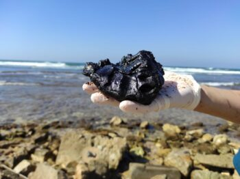A clump of tar on a beach in Israel following the February 2021 oil spill. Photo: Rachel Pardo