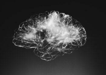 A 3D illustration of the brain. Photo by Alina Grubnyak on Unsplash